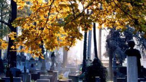 Cmentarz w Bydgoszcz
