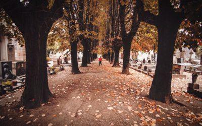 Cmentarz jest jak Facebook przodków, czyli o turystyce cmentarnej